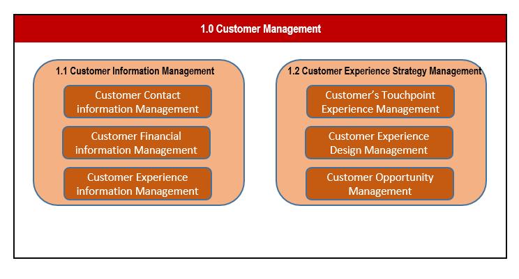 Customer Capability Model